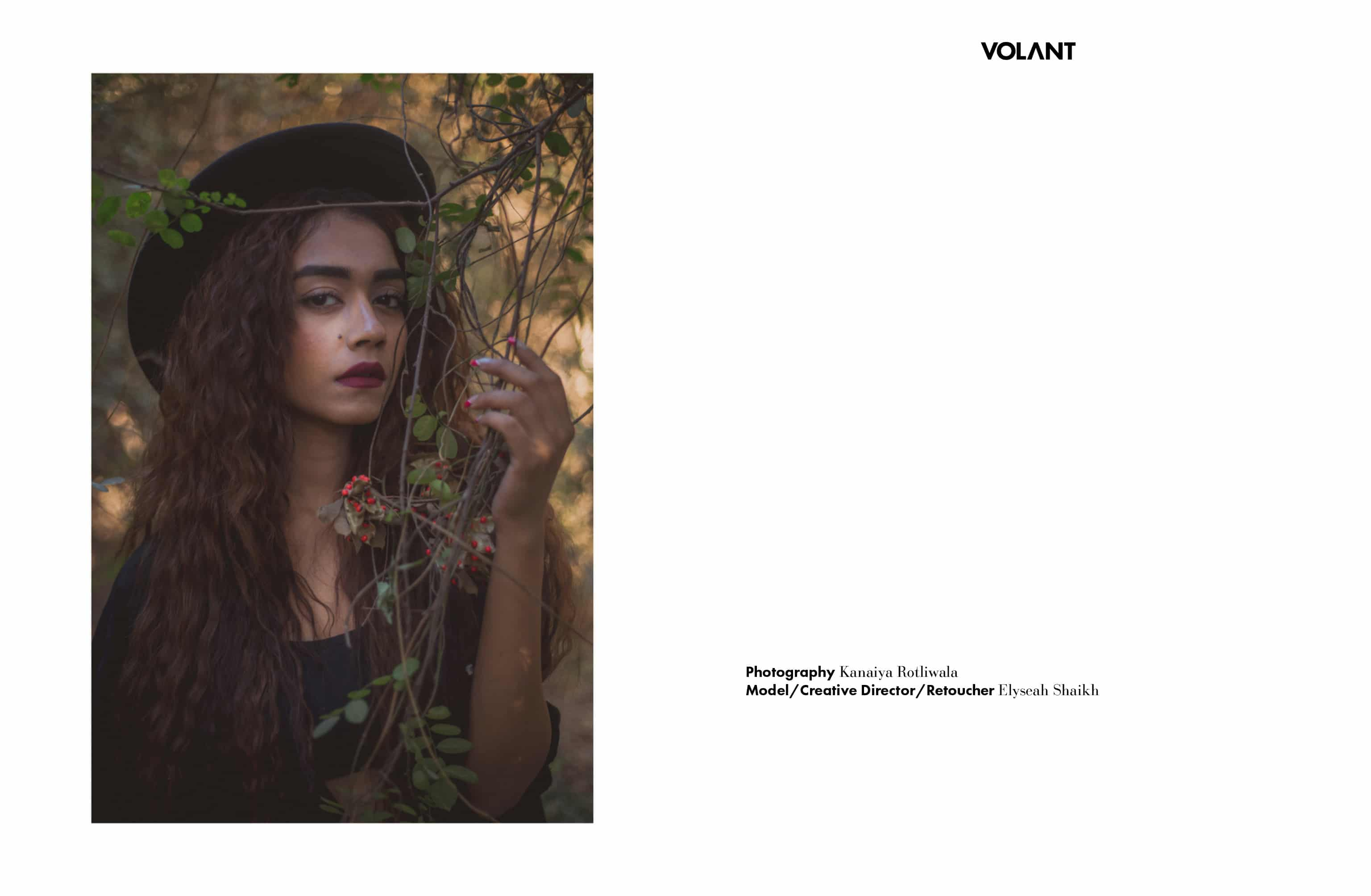 volant-webitorial-todayiwillletthepicturestalk5